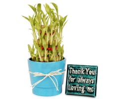 Green Way Of Thanking