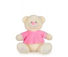A Cute Little Female Teddy Bear In Pink Dress