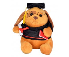 Full Moon Scholar Teddy (24 cm)