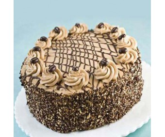 special delicious coffee cake 1kg_1 -
