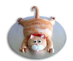 tabby-cat-cake-2kg_1