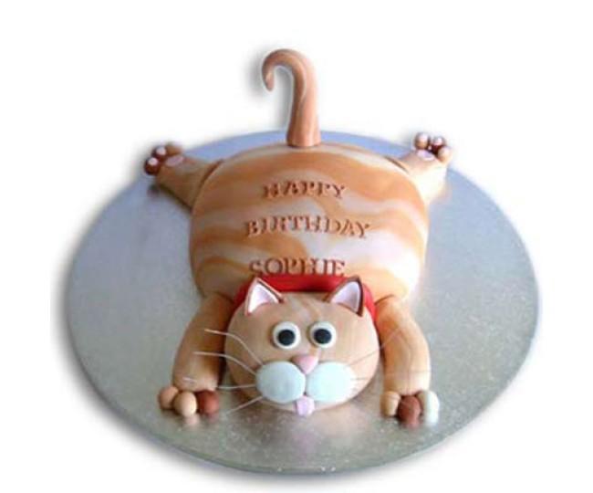 Tabby cat cake 2 kg