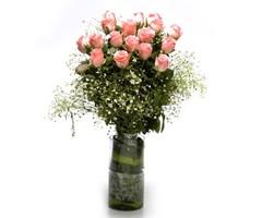 Ravishing Pink B_GV26