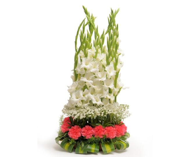 The Precious Heart - Carnations