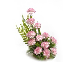 https://www.emotiongift.com/DoubleShadedCarnations