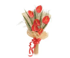 https://www.emotiongift.com/RedAnthuriums