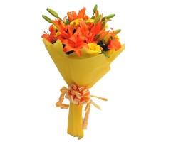 Orange Delight EXDFNP566