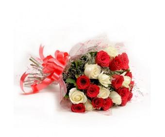 Red N White Roses EXDFNP576