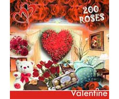 Room Full of Roses EXV45