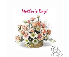 https://www.emotiongift.com/MothersDayCarnationBasket